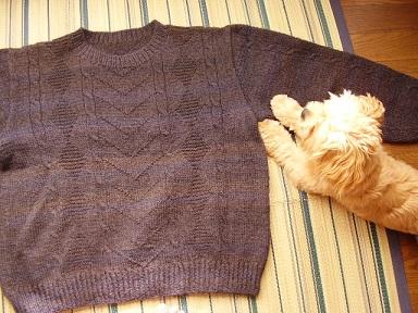 パパのセーター