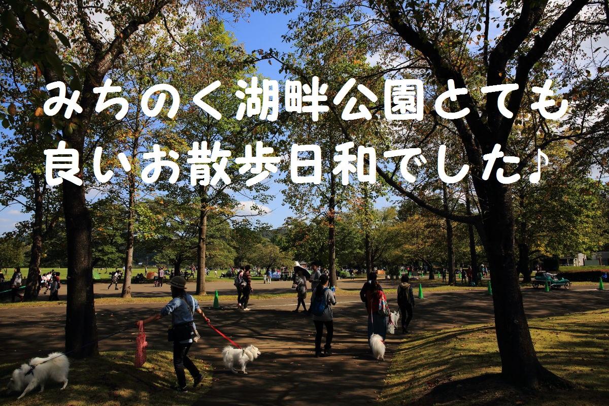 1_201310232009230d6.jpg