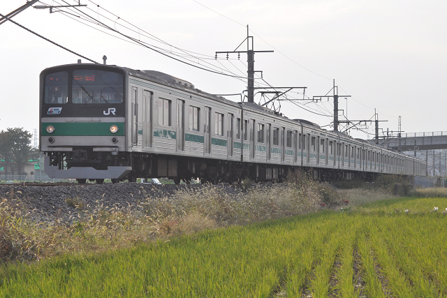 131101kawagoe (9)