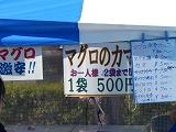 084_201402040124453ec.jpg