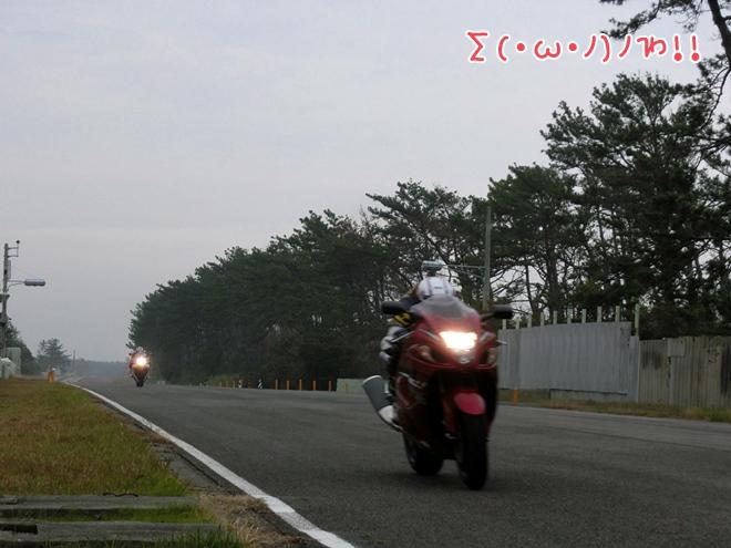 CIMG0522.jpg