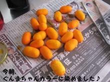 20131108 ぐんまちゃん (2)