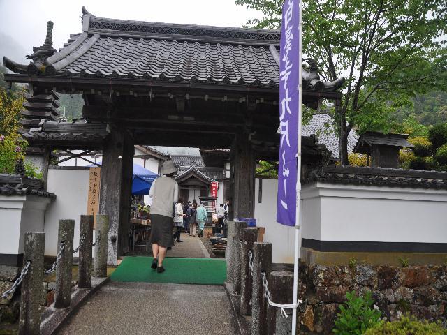fuji1 003