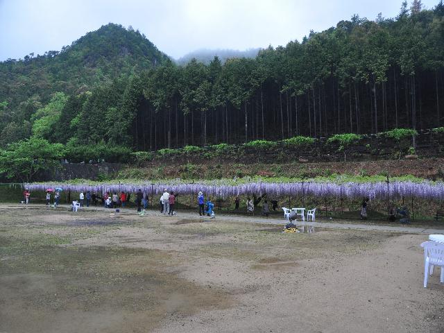 fuji1 004