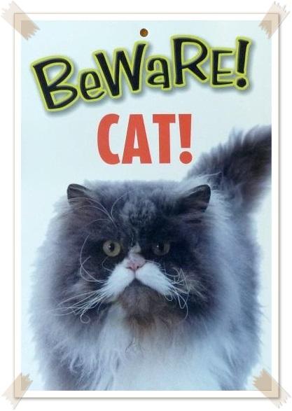 BeWaRE! CAT!