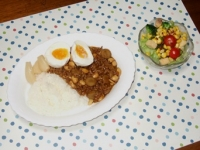 1/28 夕食 大豆とゴボウのカレー、サラダ