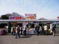4/14 滝桜 入り口の模擬店