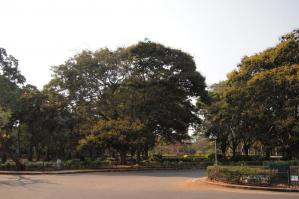 1303_Bangalore-108.jpg