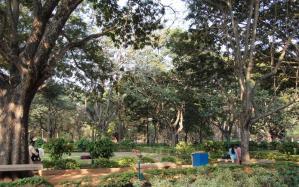 1303_Bangalore-109.jpg