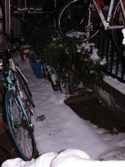 駐輪場の雪