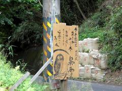 fukurou102.jpg