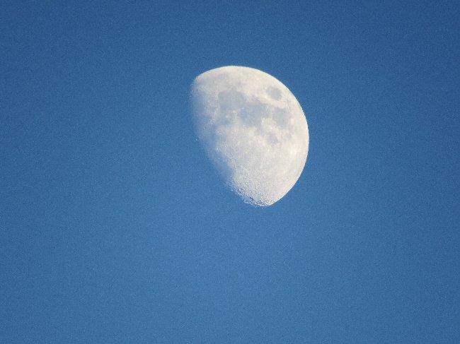 131113 つき月齢8日