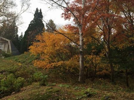 2013-10-31笹ヶ峰