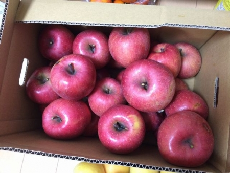 2013-11-20リンゴ