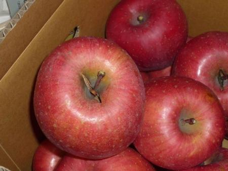つる割れリンゴ