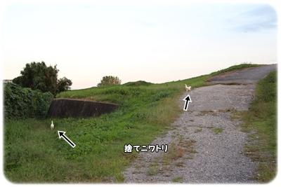 251016-6.jpg