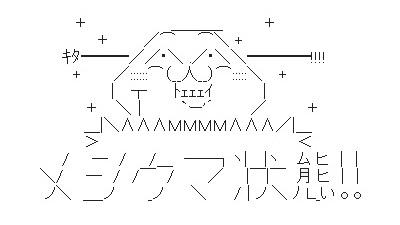 inazuma0420-20.jpg