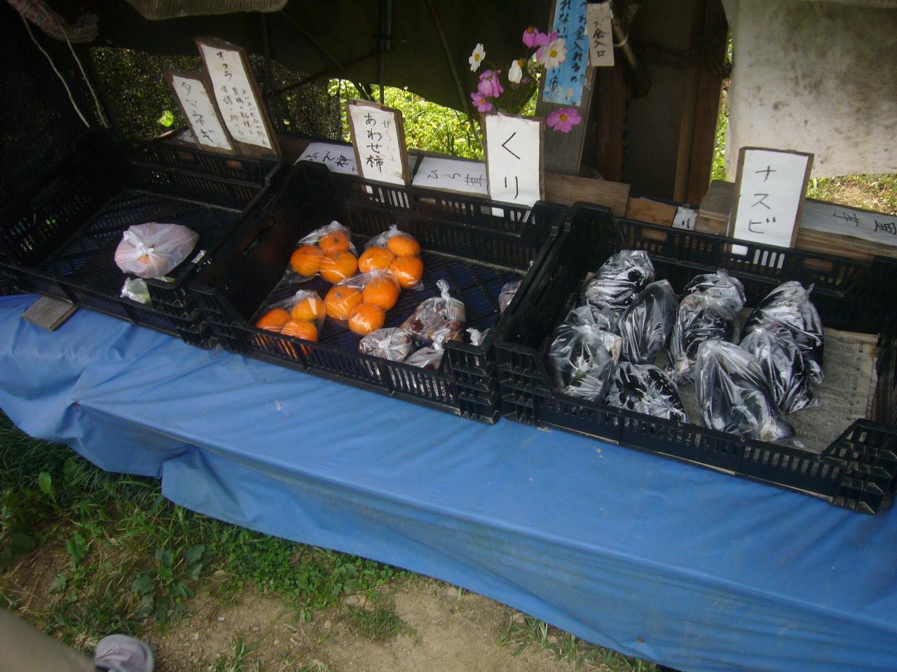 売り切れまぢか 奈良山の辺の道 H26.10.10撮影