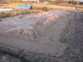 H26.1.31新規借地畑の様子(4a)@IMG_0642