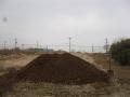 H26.2.3堆肥運搬(1400k)⑧@IMG_0686