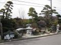 H26.2.6庭園見本⑧@IMG_0726