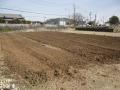 H26.2.13ローゼル定植予定地堆肥漉き込み@IMG_0813