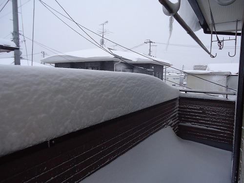 1402dokayuki001.jpg