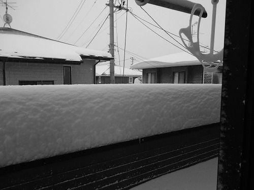 1402dokayuki002.jpg