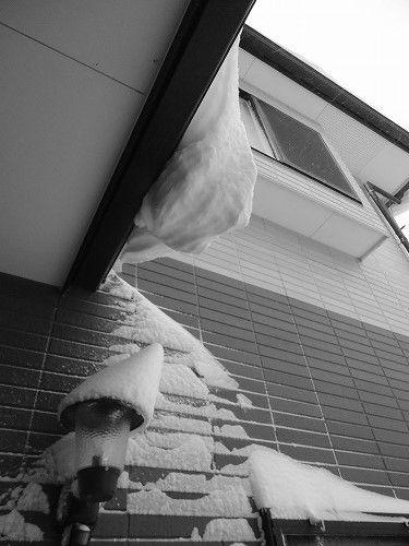 1402dokayuki005.jpg