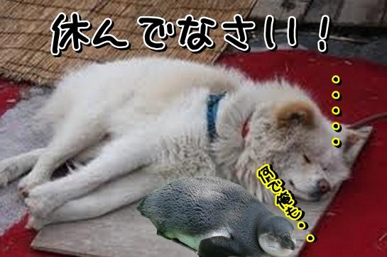 Baidu IME_2014-2-6_3-52-47