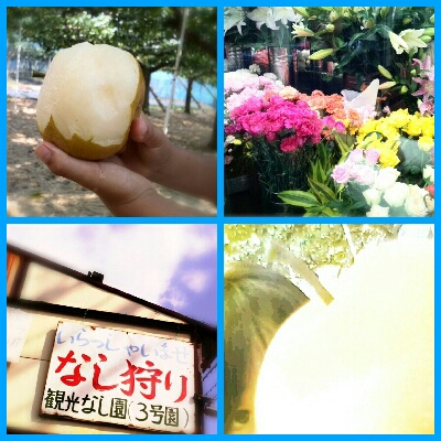 fc2_2013-09-23_21-57-58-167.jpg
