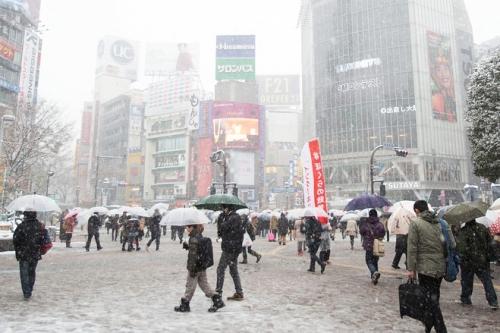 日本の大雪