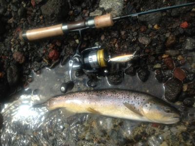 2013年の釣り・・・10回目