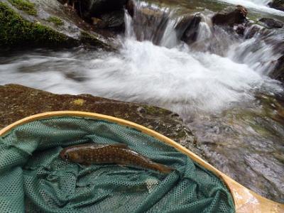 2013年の釣り・・・9回目
