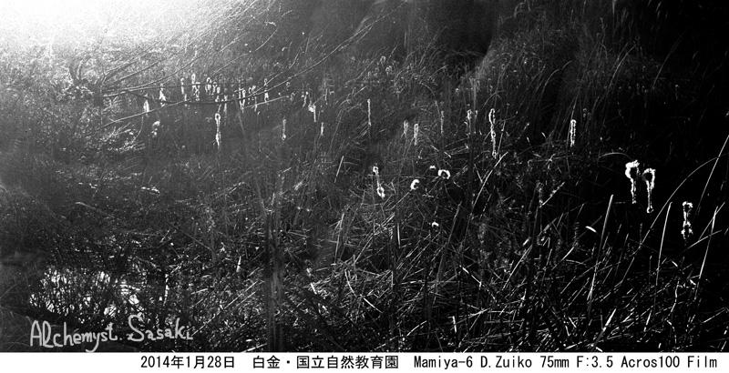 606-9 Ⅲ クーデルカ風パロラマ3