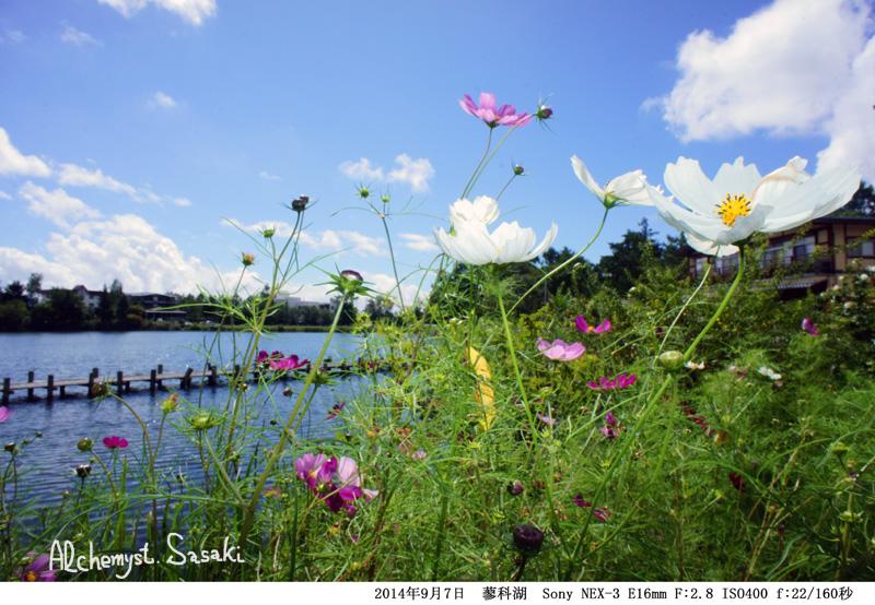 蓼科湖DSC03347