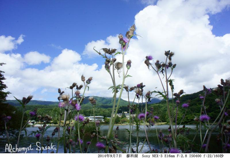 蓼科湖DSC03391