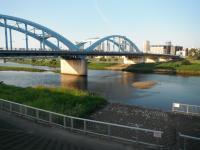 多摩川1 20130818