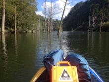 自然湖立木下流側 20130927