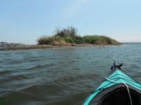 多摩川ねずみ島 20130818
