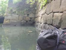江戸城石垣 20130824
