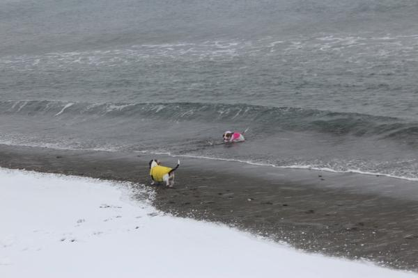 海岸雪遊び2