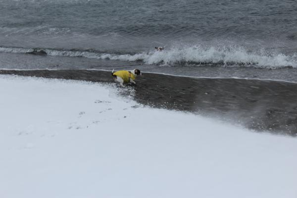 海岸雪遊び3