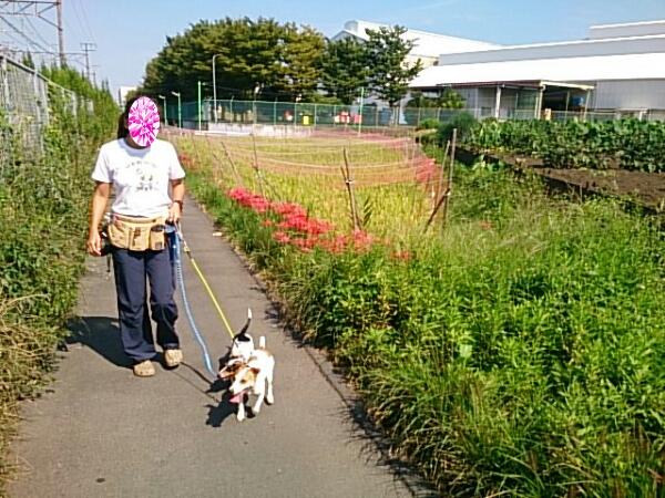 fc2_2014-09-28_15-48-21-250.jpg