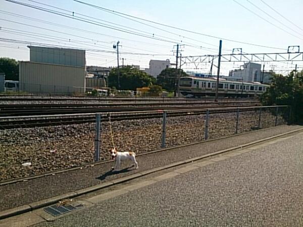 fc2_2014-09-28_16-00-30-917.jpg