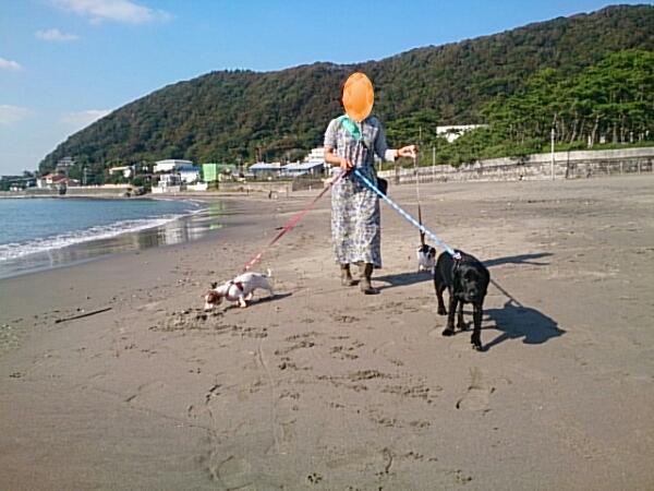 fc2_2014-10-25_17-11-48-490.jpg