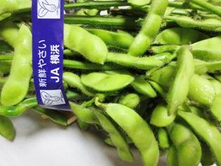 朝採り枝豆 写真