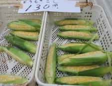 小島さんちの野菜①