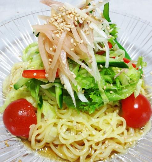 麺つゆ野菜冷麺 B