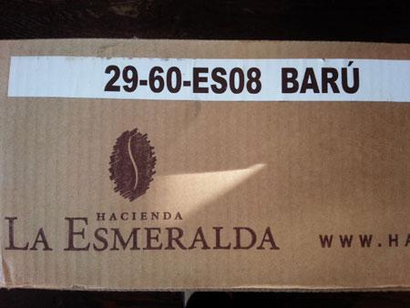 esmeraldahako.jpg